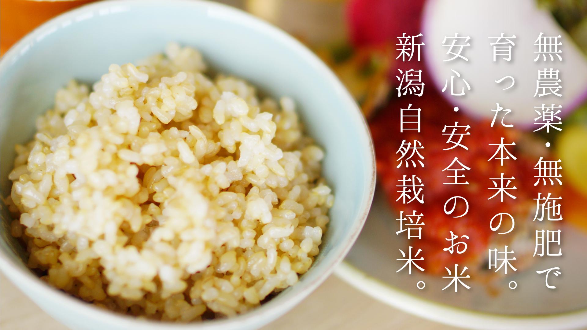 新潟自然栽培米