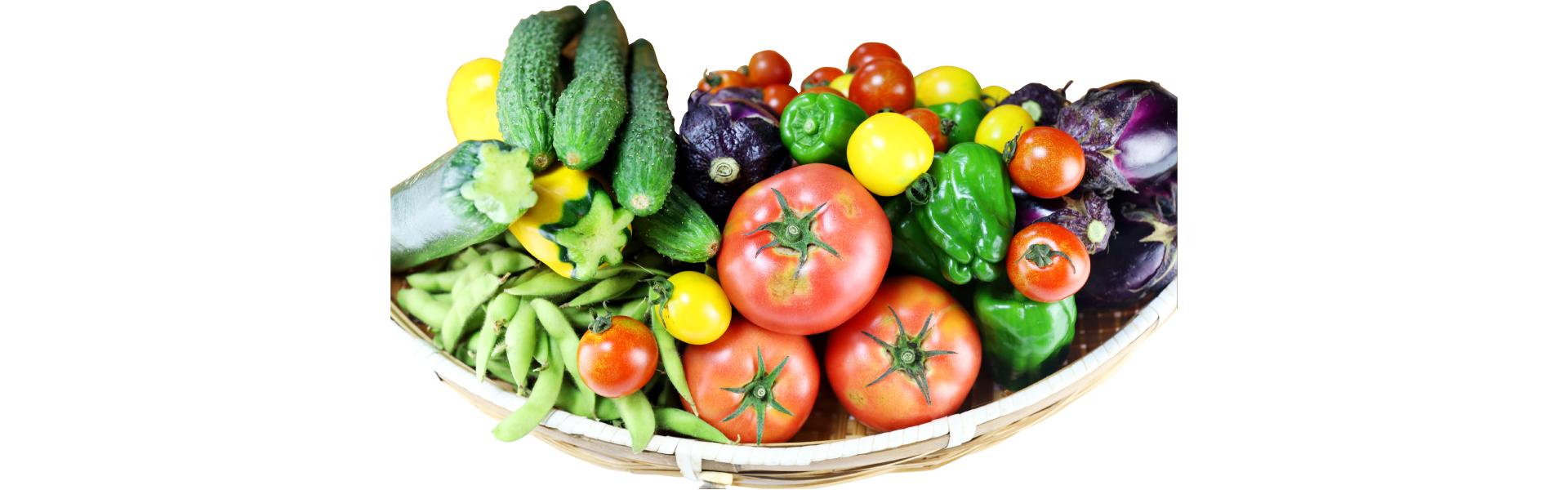 農薬・化学肥料不使用「旬のおまかせ野菜セット」始めました